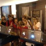 В музее Терразини собрана коллекция экспонатов морской фауны.