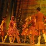 Любители балета смогли оценить высокий профессионализм и художественный уровень, безупречное исполнение танца и готовность радовать зрителя